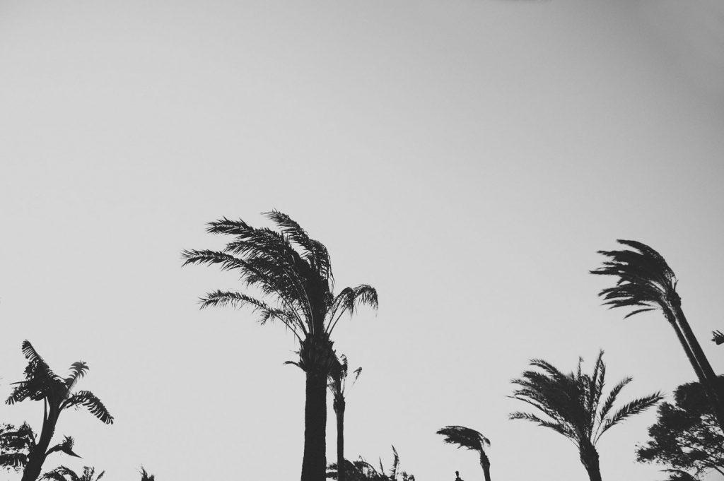 Boda en Zahara de los Atunes Cádiz